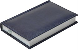 Ежедневник недатированный А6, Casco, синий