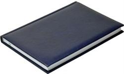 Ежедневник недатированный А5 Nature синий