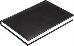 Ежедневник датированный на 2020 год А5  Vivella черный - фото 8391