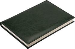 Ежедневник недатированный А5 Rich зеленый