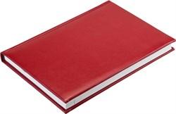 Ежедневник недатированный А5 Image красный