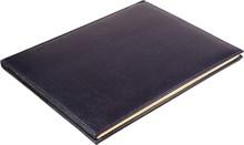 Еженедельник на 2019 год А4 Premium синий золотой обрез