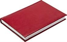 Ежедневник датированный на 2019 год А5 Nature бордовый