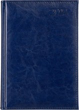 Ежедневник датированный на 2022 год А5 Rich синий